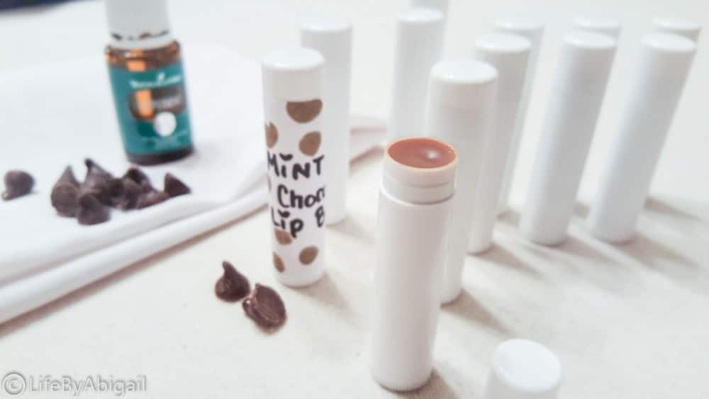 Mint Chocolate Moisturizing Lip Balm