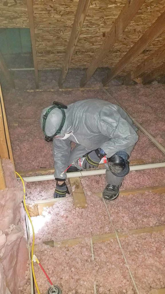 Seal any gaps or cracks and check insulation levels